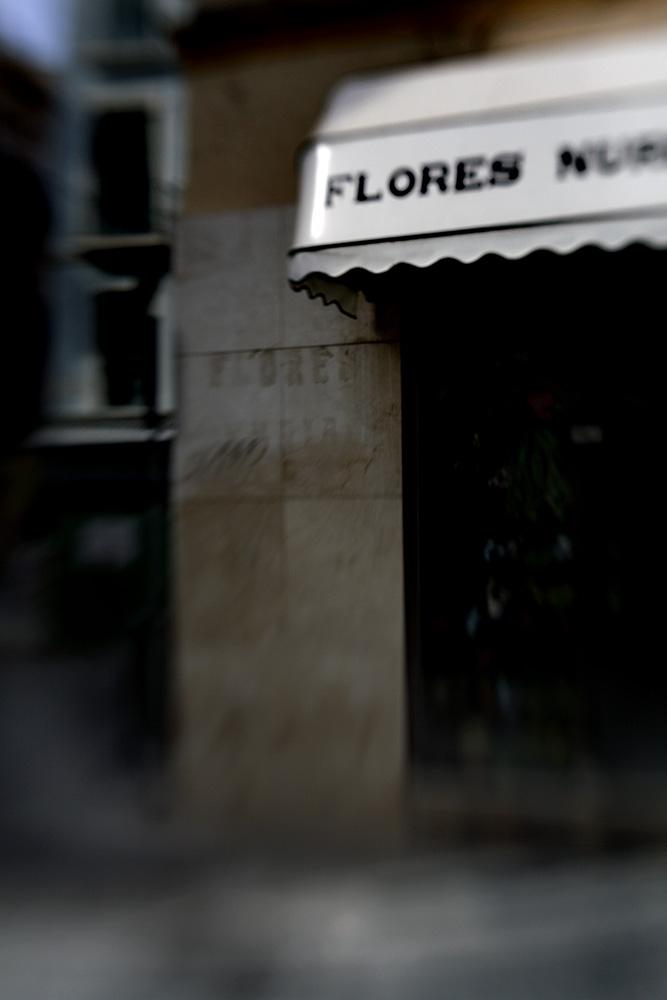 Lost_flower_shop_Malaga_bewerkt