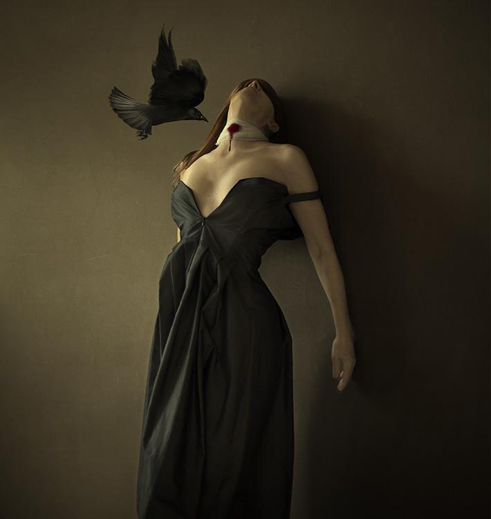 This_bird_is_not_singing_anymore_eind_met_arm